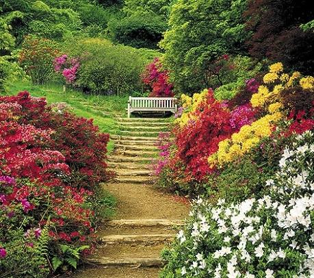gardens-4superb