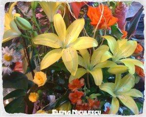 -cu flori