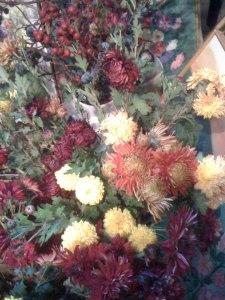 crizanteme-si-tufanele-12