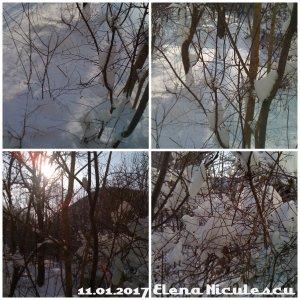 collage-11-ian-cu-soare