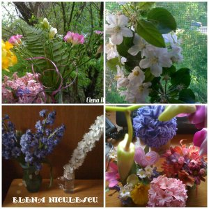 collage-spring-flowers1